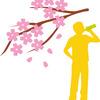就活生にも息抜きを。桜の下で飲みたいお茶は?