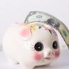 税金について知りたい! 毎月の給料からいくら引かれるの?