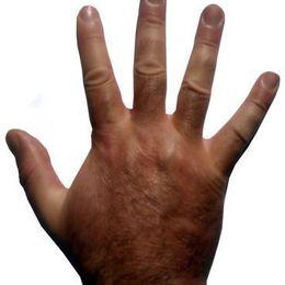 アメリカで大流行! 手を見るだけでわかる性格診断