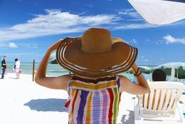 サザン・ゆず・TUBEは定番! 夏になると聴きたくなる曲「あー夏休み」「SUMMER SONG」「あえての『Winter Song』」