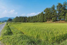 1位千葉県、2位茨城、3位東京……行ってみたら想像以上に田舎だった都道府県ランキング