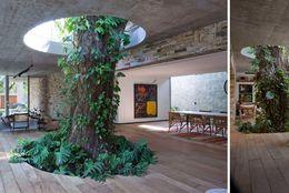 アメリカ発! 木と人が一緒に暮らせる、究極のおもしろエコ建築物6選