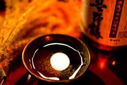 1位アメリカ、2位香港、3位韓国……日本酒を愛飲している外国ランキング
