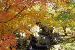 福岡のおすすめデートスポット15選!カップルで行きたい夜景から大自然まで見所がたくさん!