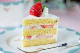 10万円オーバー!? 『けいおん!』のムギちゃんが持ってきたケーキ、総額いくらくらいになるの?