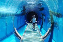 横浜の人気観光地15選! 絶対行きたいおすすめスポットは?