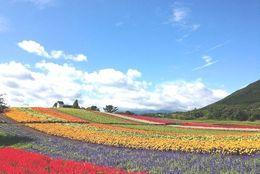 カップルで行きたい! 宮城・仙台のおすすめデートスポット&観光地15選