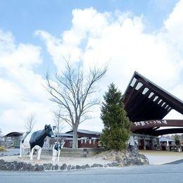 熊本のおすすめデートスポット15選 カップルで行きたい定番スポットは?