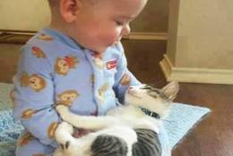 有能なベビーシッター? 赤ちゃんのお世話をしてくれるネコ 写真30選