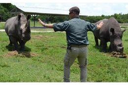 リアル「ジュラシック・ワールド」? おもしろくて笑っちゃう飼育員と動物たちによる完全再現 画像8選