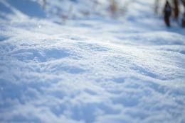 出身者に聞いた! 他地域の人に自慢したいご当地名物6選「雪の回廊(青森県)」「じゃこカツ(愛媛県)」