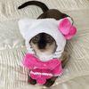 ネコがキティで、キティがネコに……? ハローキティになってしまったかわいいネコ達 画像10選
