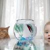 最強Wコンビ! かわいくて癒される、仲良しネコと赤ちゃん 画像10選