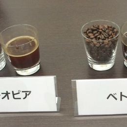 産地と種類を当てられるか?! 缶コーヒーメーカー社員が「利きコーヒー」に挑戦してみた