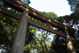 オシャレ学生じゃなくても楽しめる! 渋谷・原宿のホッと落ち着くスポット5選【学生記者】