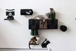 """土管から猫!?  猫も人も楽しい、""""猫用""""リアルスーパーマリオワールド"""