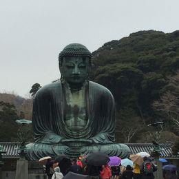 鎌倉で女子旅しませんか? 女子大生におすすめの日帰り旅プラン♪【学生記者】