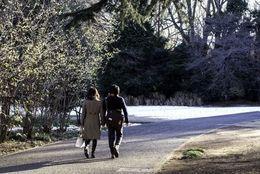 デートでは男性に車道側を歩いてほしい? 女子大生の約◯割がYESと回答!