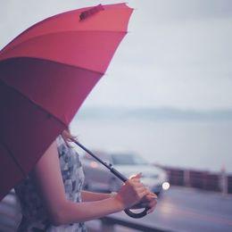 ビニール傘? ブランド物? 雨の日に使う傘はどんなものが人気?