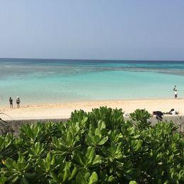 日本一きれいな星と海! 有人島最南端にある波照間島の魅力 【学生記者】