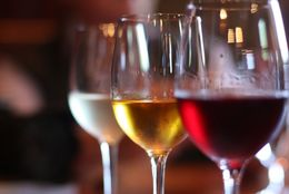 ワインバル店員が教える! ワインの基礎知識(テイスティング編)【学生記者】
