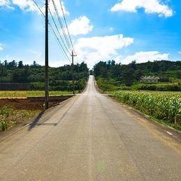 リゾートバイトの裏側教えます! 就活にも役立った、石垣島での住み込みバイト体験談【学生記者】