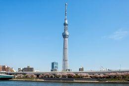 新旧対決! 東京タワーorスカイツリー、大学生カップルに人気なデートスポットはどっち?