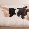 帰りが遅くなった平日、睡眠VSお風呂どっちを優先する? 社会人の4割はベッドにダイブ!