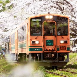 これからの季節にぴったり! 春を感じるアニメ・漫画作品Top5