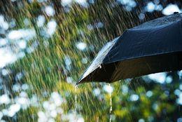 梅雨が嫌いな大学生は88.4%! 梅雨の時期に不快だと感じることTop5