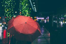 傘1本買うのにいくらまで出せる? 大学生の金銭感覚は……