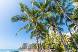 大学生がこの夏行きたい海外ビーチTop5! 3位マイアミビーチ