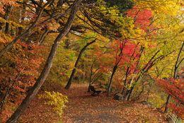 9月に行きたい! おすすめ旅行先11選【国内&海外】