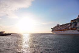 11カ国の青年たちと豪華客船で1カ月の共同生活?!  「世界青年の船」とは【学生記者】