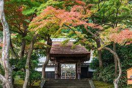 東京から日帰りで行ける! おすすめ一人旅の行き先10選