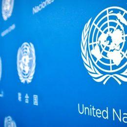 【サークル体験談】どんなことをするの?「模擬国連」の活動を紹介【学生記者】