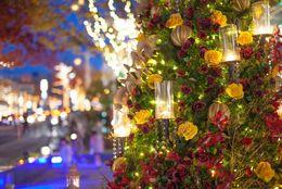 【2017】クリスマスに行きたい! 都内デートスポットランキングTop10【男女別】