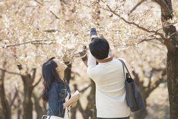 大学生がこの春休みにしたいことTop5! 国内旅行が最多!