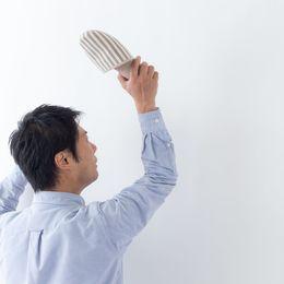 一人暮らしでゴキブリが出たときの対処法は? 出ないようにするためにはどうするべき?
