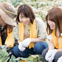 """【体験記事】 農業の""""ホント"""" がわかる!? 農業インターンシップに密着してみた"""