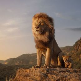 ライオン・キングのような「動物の王」って本当にいるの? ライオンの生態について飼育員さんに聞いてみた!