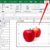 Excelのフィルターで画像が移動・変形してしまうときの対処法と画像フィルターの使い方