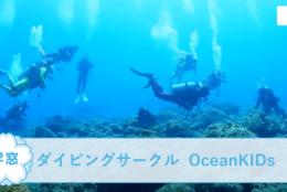 【ダイビングサークル OceanKIDs @関東】を紹介!一緒にダイビングを楽しもう!#春からFES2021