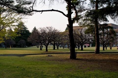 【Q&A】所沢キャンパスに通っているのですが、早稲田に通う友達が欲しいです!どうやったら友達ができますか?