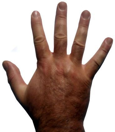 アメリカで大流行中!手を見るだけでわかる性格診断