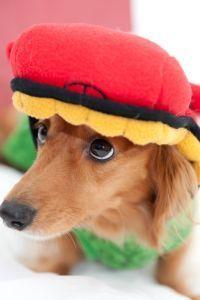 帽子が似合わない! どうすればいいの? 帽子の似合う人、似合わない人の違いとは