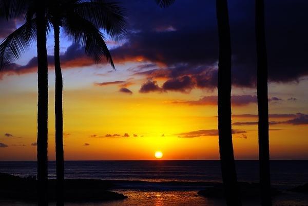 【海外卒旅ランキング】ハワイの魅力・おすすめ情報