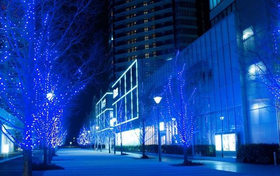 聖夜に訪れたい! 大学生が行きたい都内のクリスマスデートスポット5選