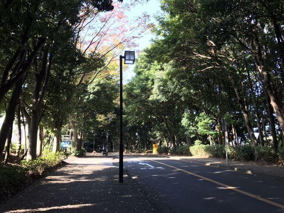 横浜国立大学の学食「第一食堂」に潜入! 期間限定韓国メニューも実食【全国学食MAP】