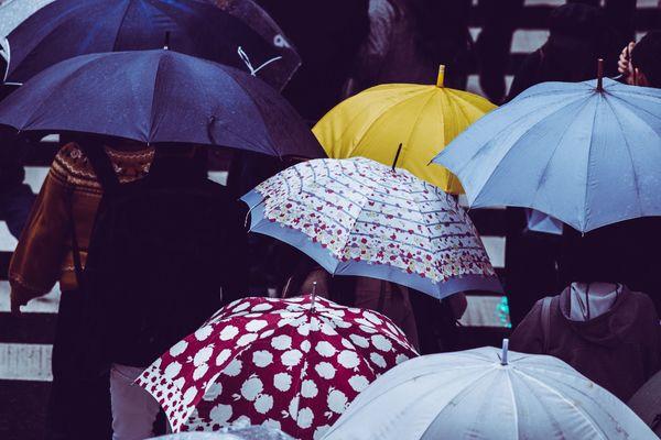 傘盗まれたことある? 経験者は4割以上も! 「ビニール傘ならいいか」「傘置き場に注意」